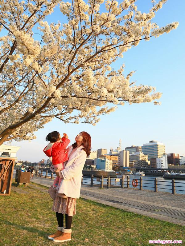 20170402東京賞櫻河口湖_0-10.jpg