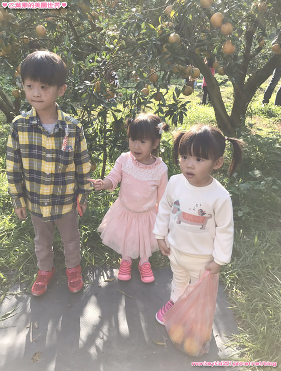 20170101紅通通跨年趴_3-7.jpg