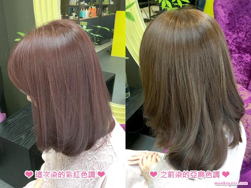 20170420激賞染紫紅色_16.jpg