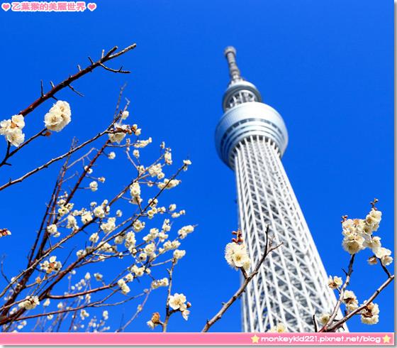 20140306東京DAY1_0-1.jpg
