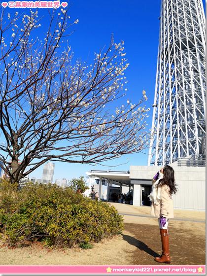 20140306東京DAY1_4-15.jpg