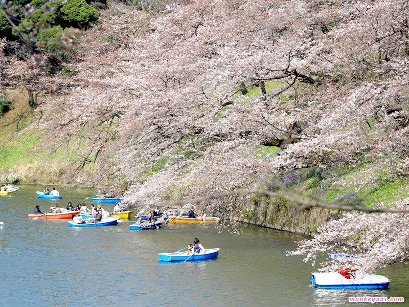 20170402東京賞櫻河口湖_2-5-3.jpg