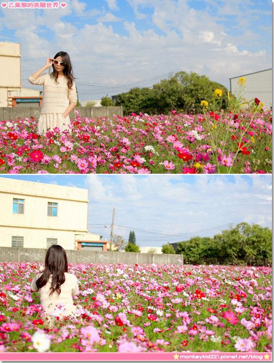 20140203農曆春節_6-6.jpg
