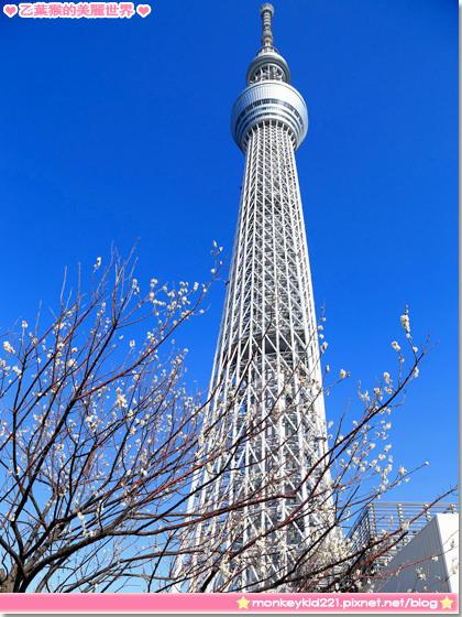 20140306東京DAY1_4-12.jpg