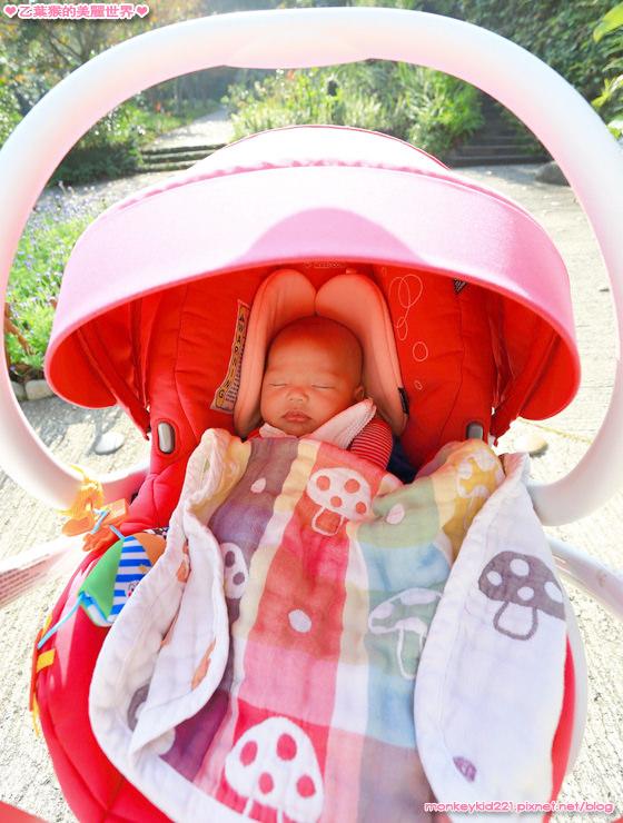 20161223台中麗寶Outlet_3-12.jpg